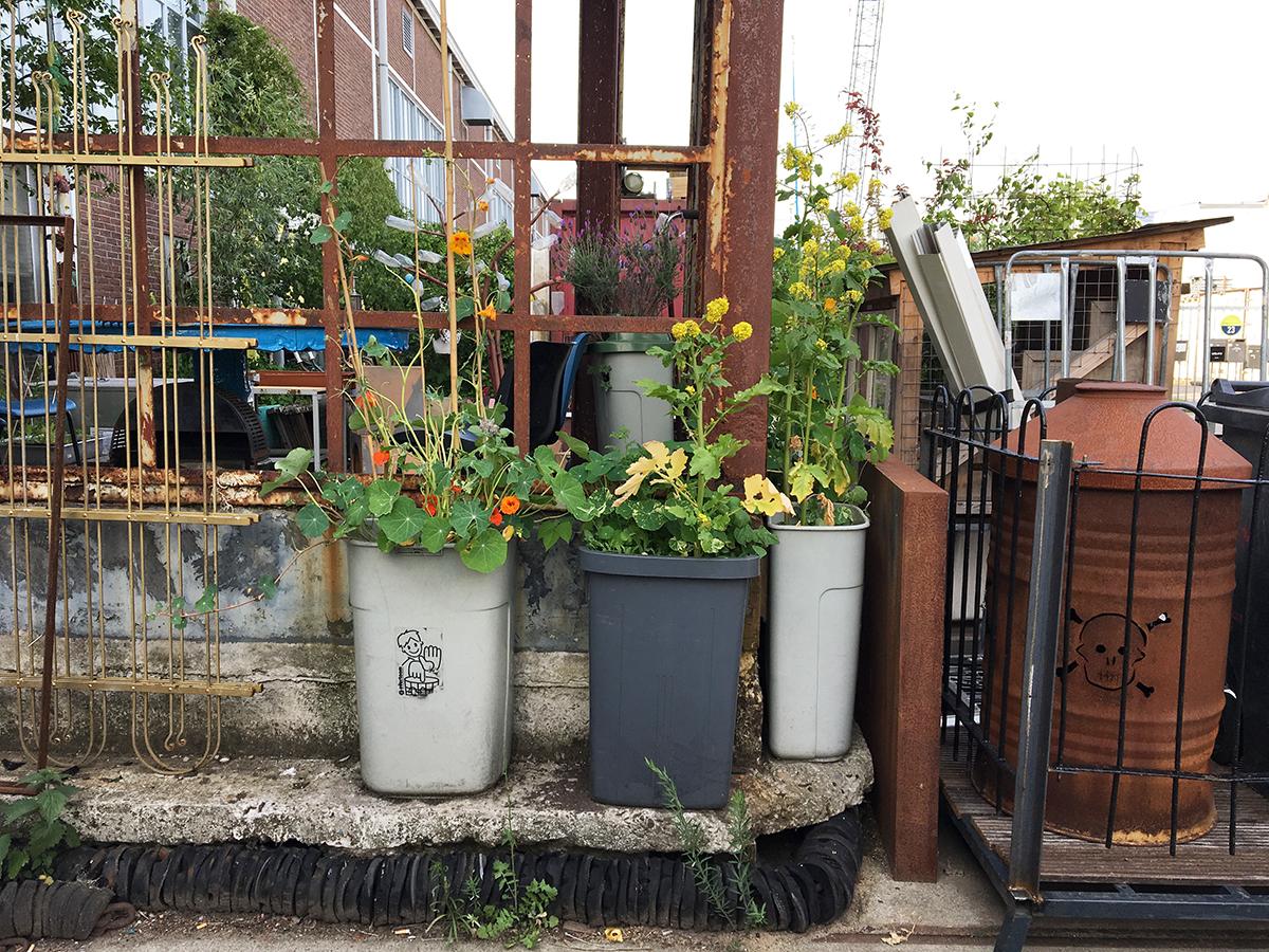 3 containres poubelles en plastique sont transformés en jardinières à Amsterdam
