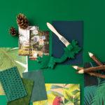 Green forest… soif de nature et de verdure !