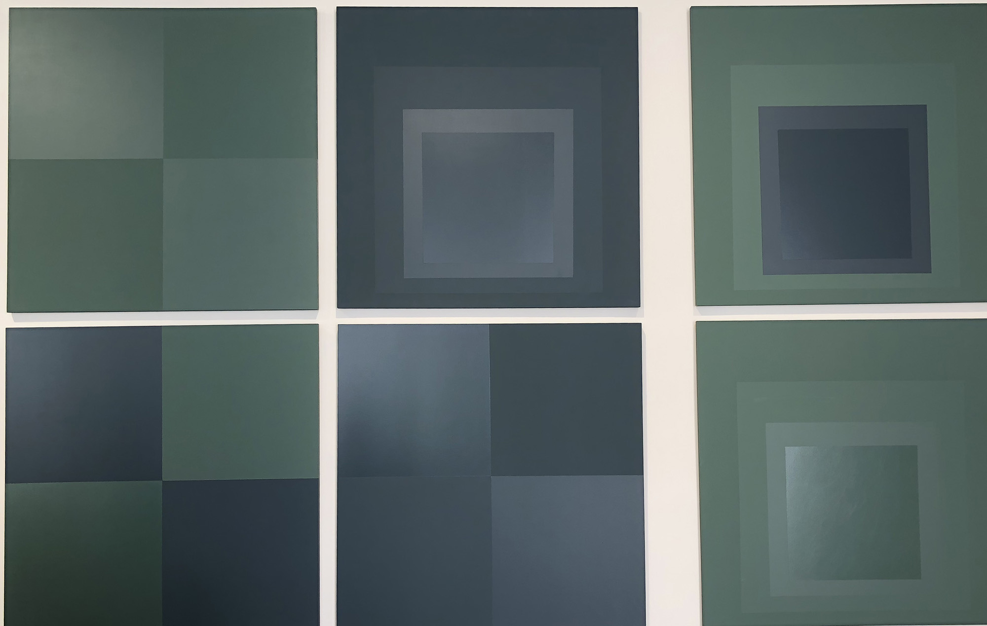 des toiles de couelurs vertee et bleue exposées comme dans une galerie d'artiste