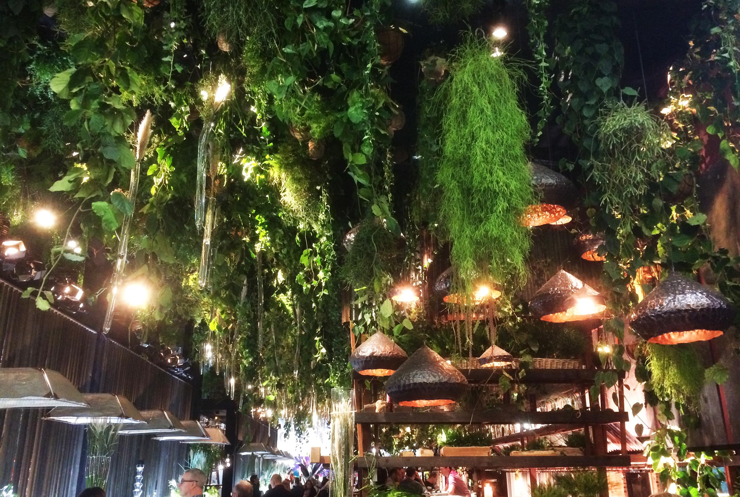 Une nature luxuriante et moniprésente en particulier au plafond avec une profusion de plantes suspendues