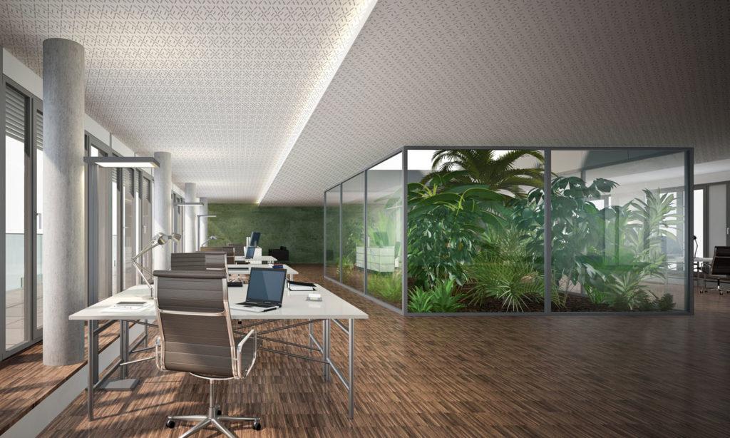 Plafond acoustique Siniat installé dans de jolis bureaux contemporains. Sol en parquet brut et patio végétalisé